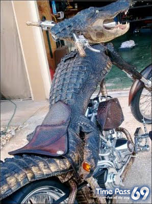 Crocodile Bike Unbelievable Idea