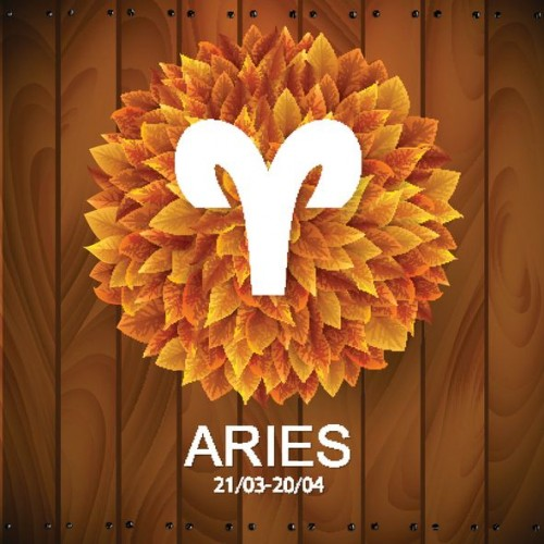 What does your zodiac sign predict for 2017