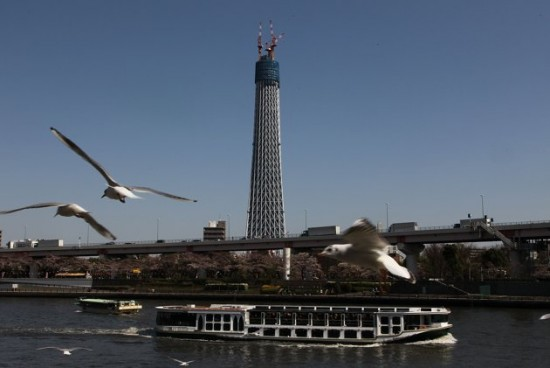 World's Tallest Tower Now Open