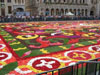 Floral Carpets at Brussels