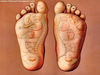 Accupressure and Reflexology Quite Interesting Keep Walking