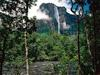 The Highest Waterfall in the World Angel Falls